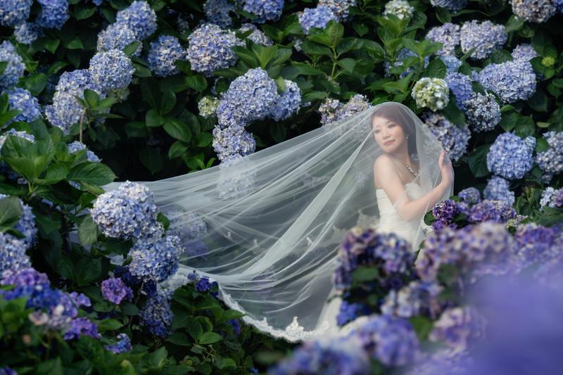 自助婚紗, 自主婚紗, 婚攝東法, Donfer, 風格婚紗, Fine Art, 藝術性婚紗, 繡球花, 保安宮