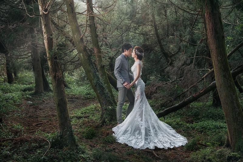 自助婚紗, 自主婚紗, Pre-Wedding, 婚攝東法, Donfer, 君品, 雲軒, 陽明山, 風格婚紗, Fine Art